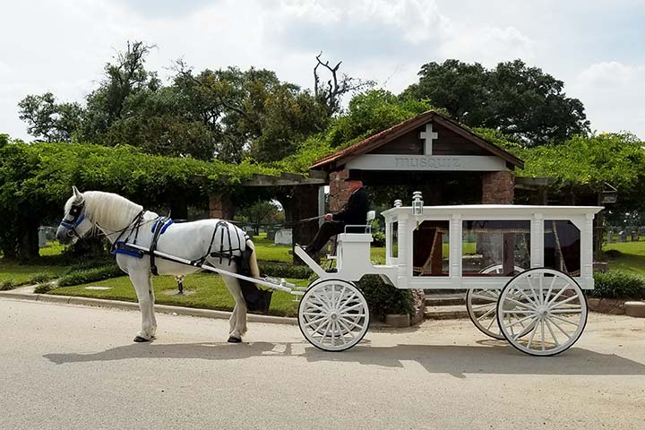 White Horse and Carriage Funeral Hearse, Houston Carriage