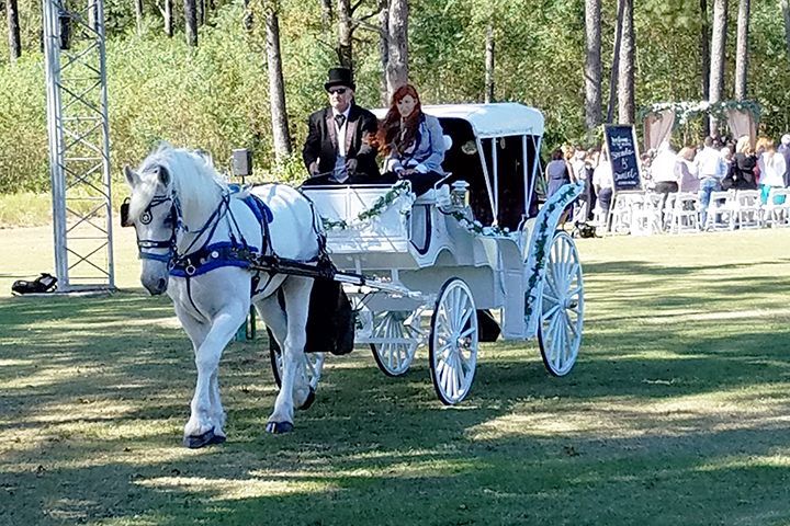 Vis-a-Vis Horse and Carriage Ride at Wedding, Houston Carriage