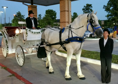 Vis-a-Vis Wedding Carriage, Houston Carriage