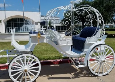 White Cinderella Horse and Carriage Ride, Houston Carriage